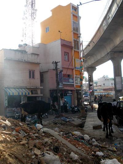Bangalore, son métro, ses vaches et ses ordures <3