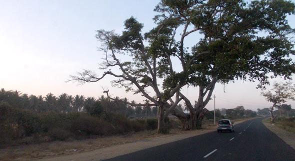 A travers le Karnataka
